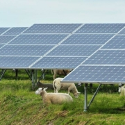 Biggest Solar Park of the Benelux, Deme by Antalexion