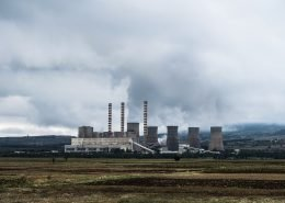 Countries and public utilities are trying to reduce carbon emissions by burning wood pellets instead of coal, but recent studies have shown that the practice will have disastrous effects.